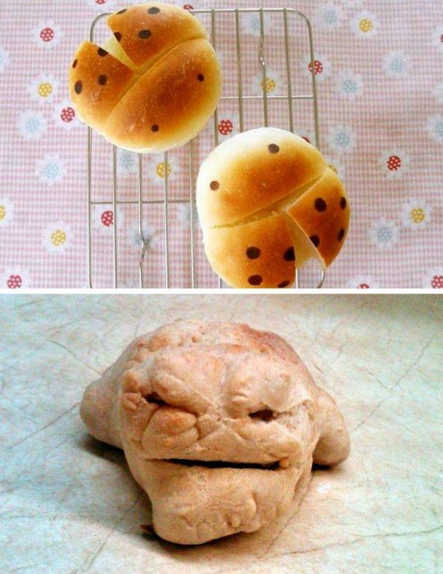 They Lied To Us (15 pics)