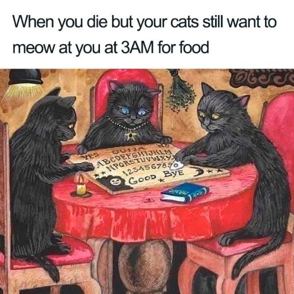 Art Memes (24 pics)