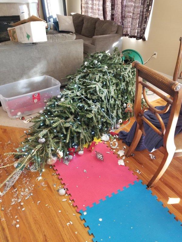 Christmas Fails (19 pics)