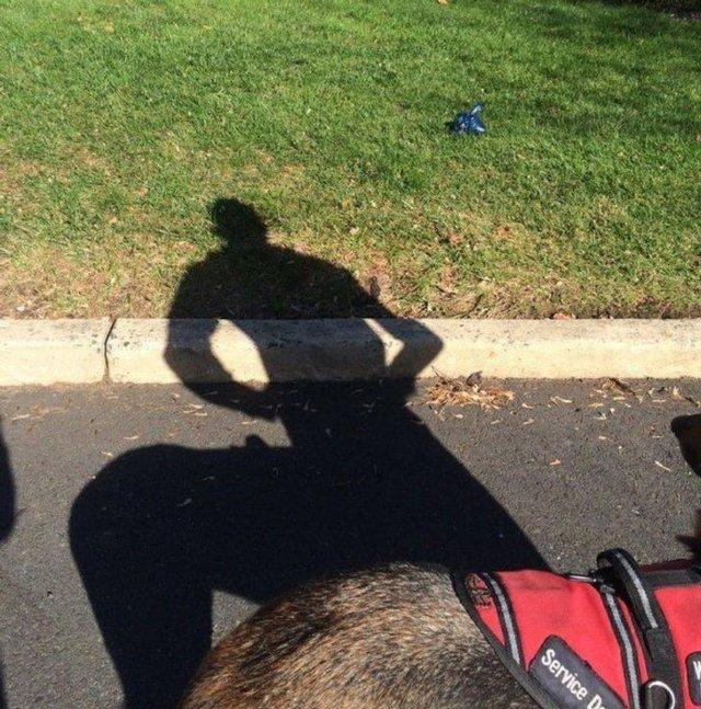 Mysterious Shadows (18 pics)