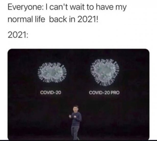 Quarantine Memes (29 pics)