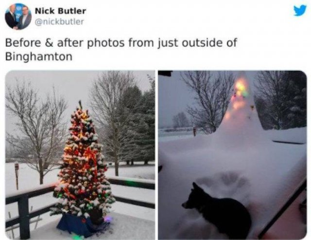 New York Snowy Apocalypse (28 pics)