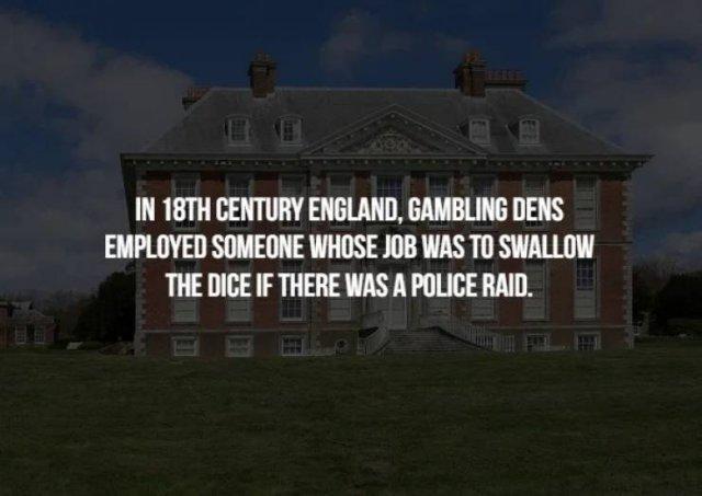 Exiting Facts (17 pics)