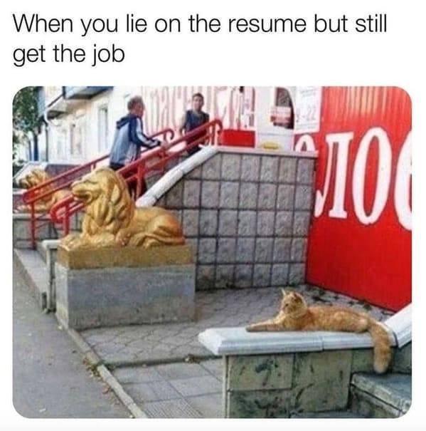 Hilarious Memes (45 pics)