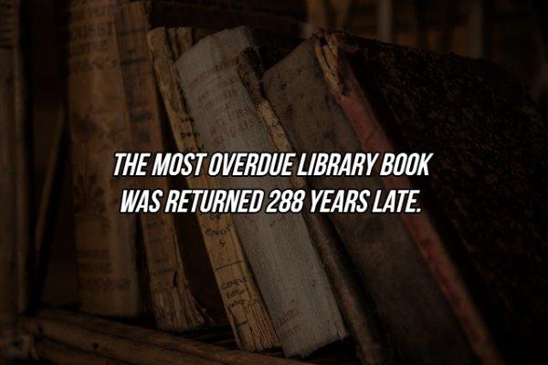 Interesting Facts (17 pics)