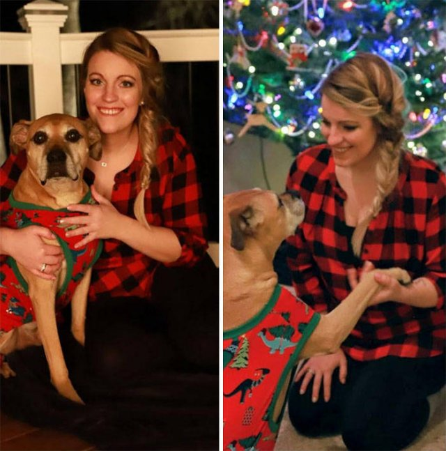 Christmas Wholesome Stories (48 pics)