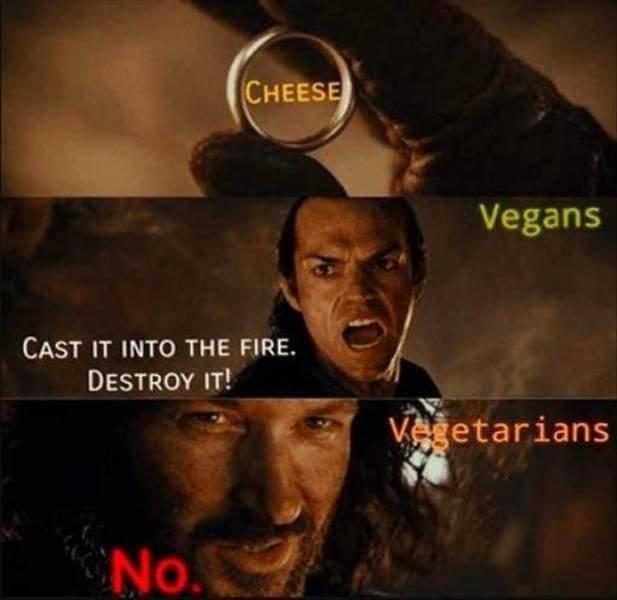 Random Funny Memes (227 pics)