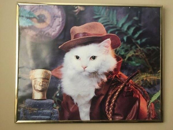 Thrift Shop Treasures (43 pics)