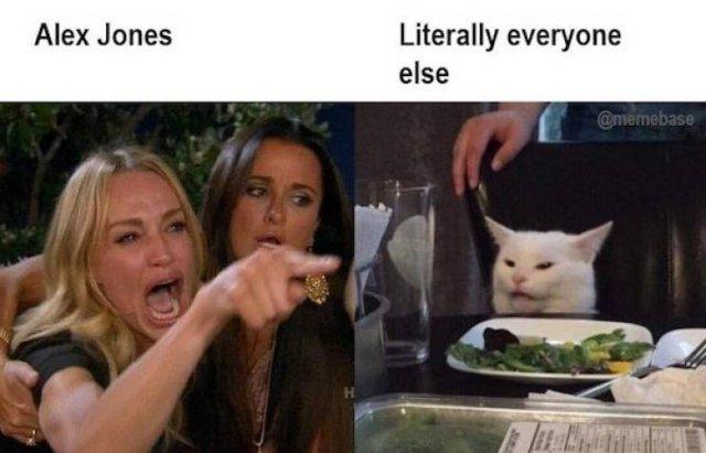 Woman Yelling At The Cat Memes (17 pics)