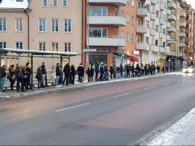 Life In Sweden (19 pics)