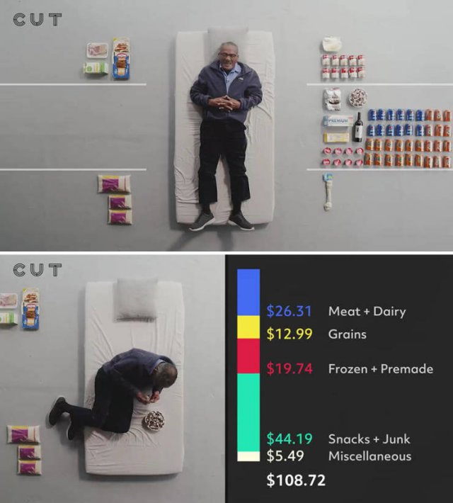 Groceries People Buy For $100 (23 pics)