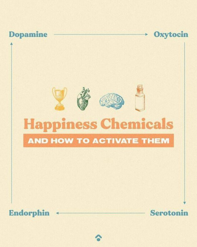 How Easily Activate Your Happiness Chemicals (25 pics)