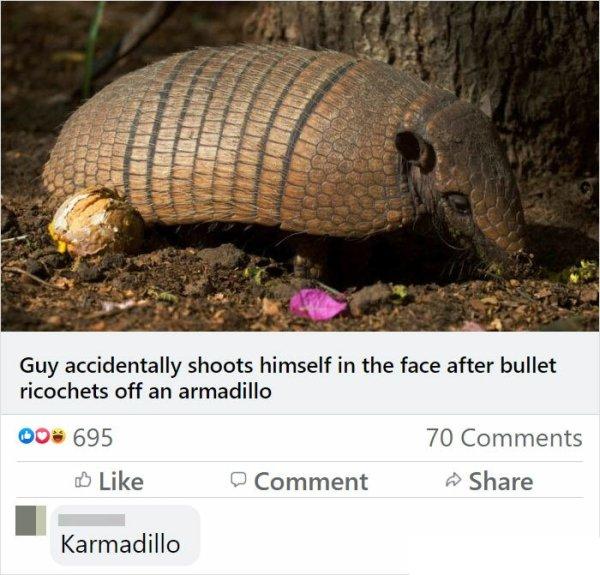 Instant Karma (27 pics)