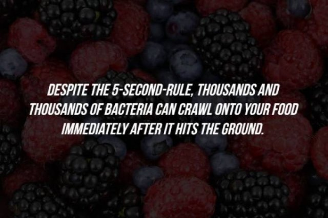 Intriguing Facts (15 pics)
