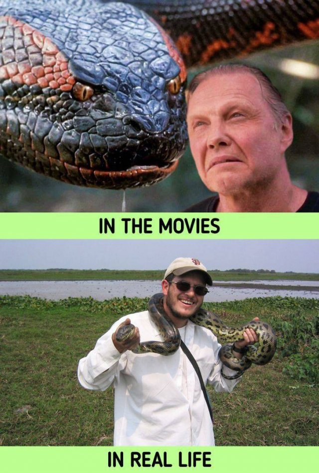 Things In Movies And In Real Life (20 pics)