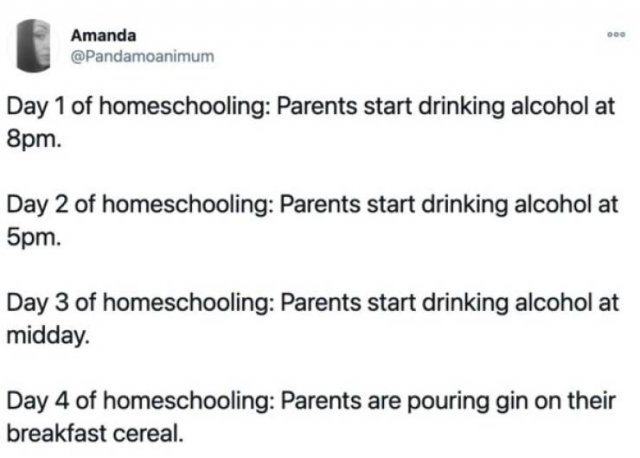 Tweets About Homeschooling (31 pics)