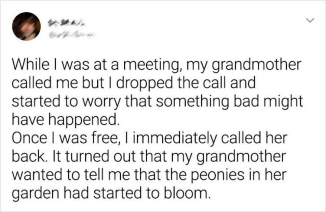 Everything About Grandparents (17 pics)