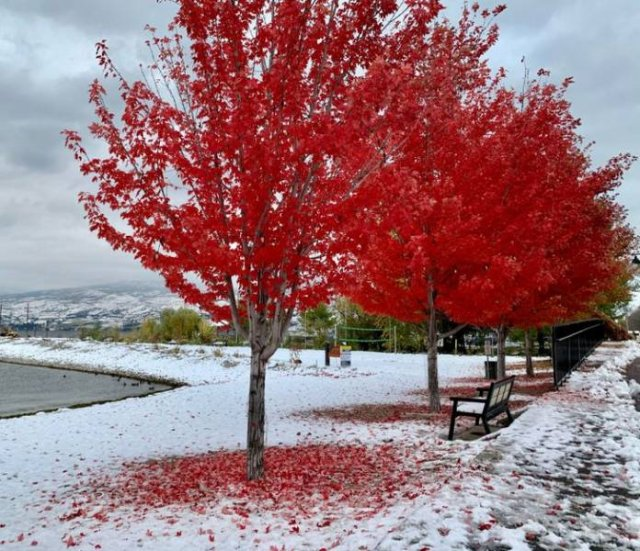 Beautiful Winter Pictures (25 pics)