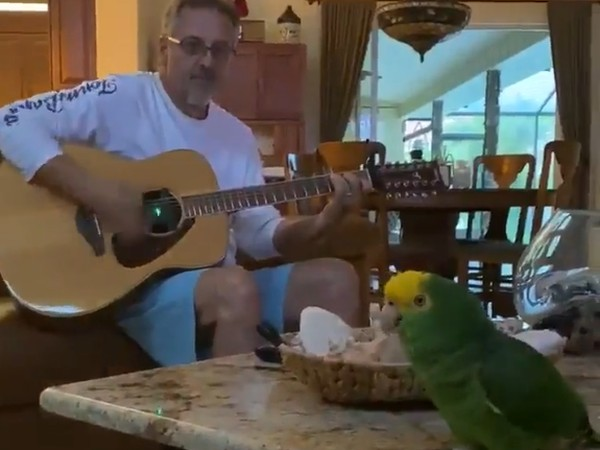 This Parrot Loves To Sing