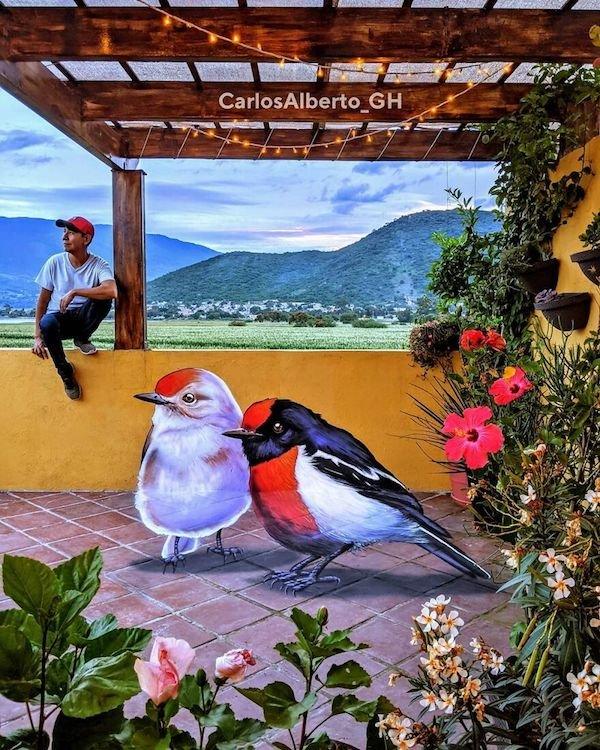 Beautiful 3D Street Art (35 pics)