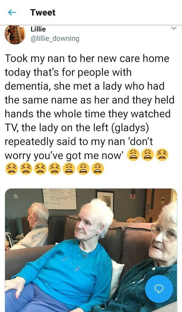 Wholesome Stories (60 pics)