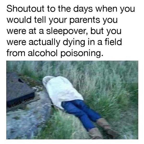 Alcohol Memes And Pictures (29 pics)