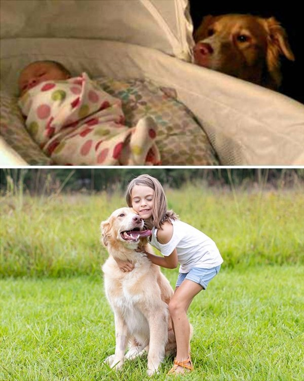 From Cute Puppy To A Big Dog (36 pics)