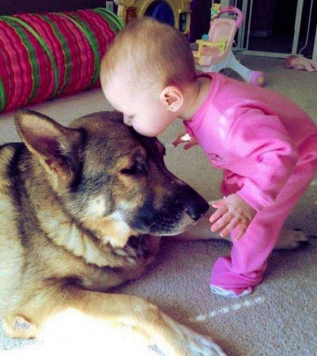 No Words Needed For These Pictures (46 pics)