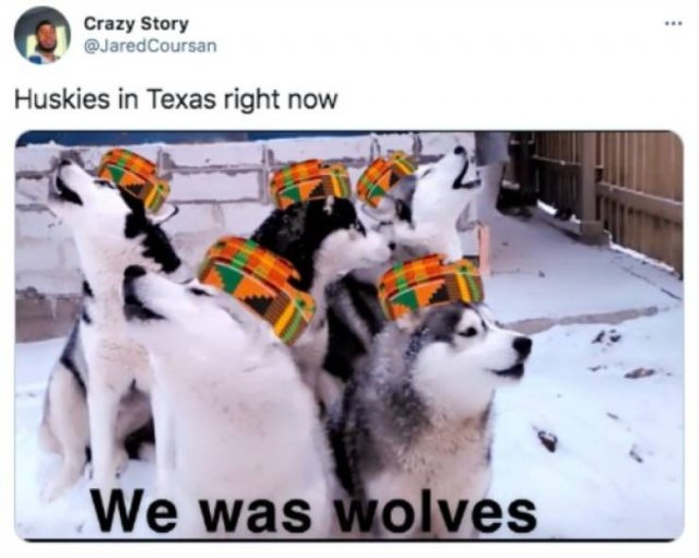 Memes And Tweets About Texas In Snow (50 pics)