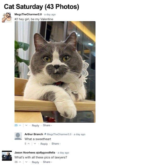 Sarcastic Comments (40 pics)