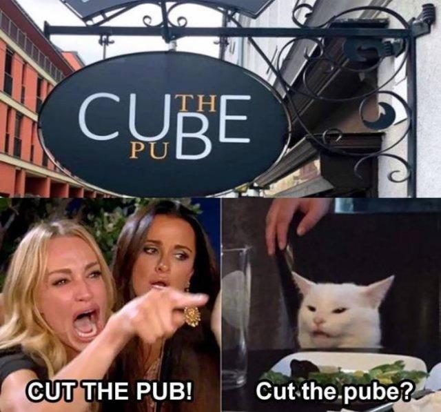 Random Funny Memes (67 pics)