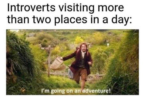 Introvert Memes (33 pics)