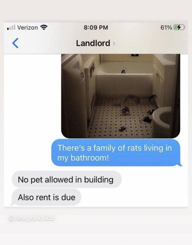 Weird Landlords (21 pics)