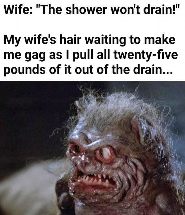 Memes For Grown-Ups (61 pics)