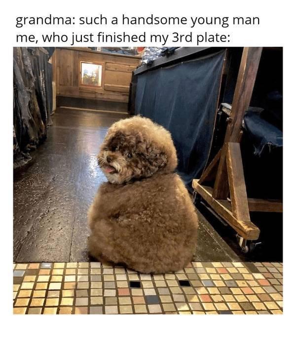 Wholesome Memes (28 pics)