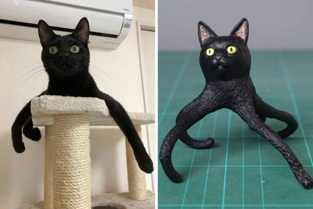 This Japanese Artist Turns Funny Animal Photos Into Sculptures (30 pics)