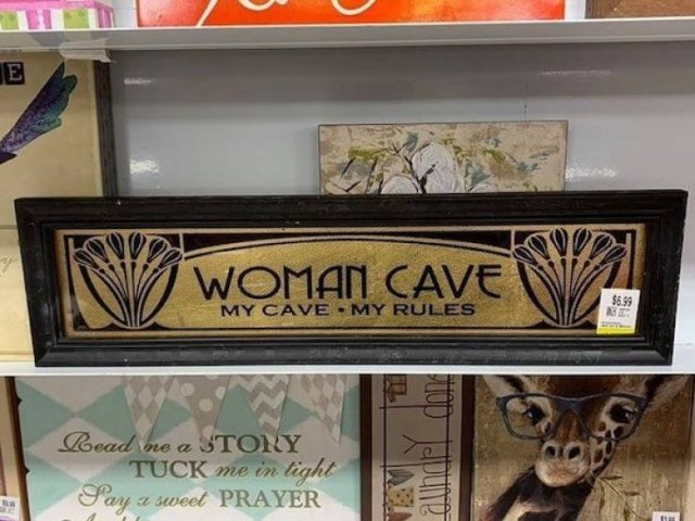 Weird Thrift Shop Finds (27 pics)