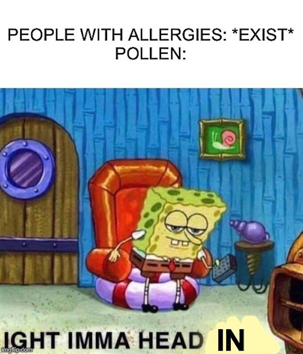 Memes For Allergic People (33 pics)