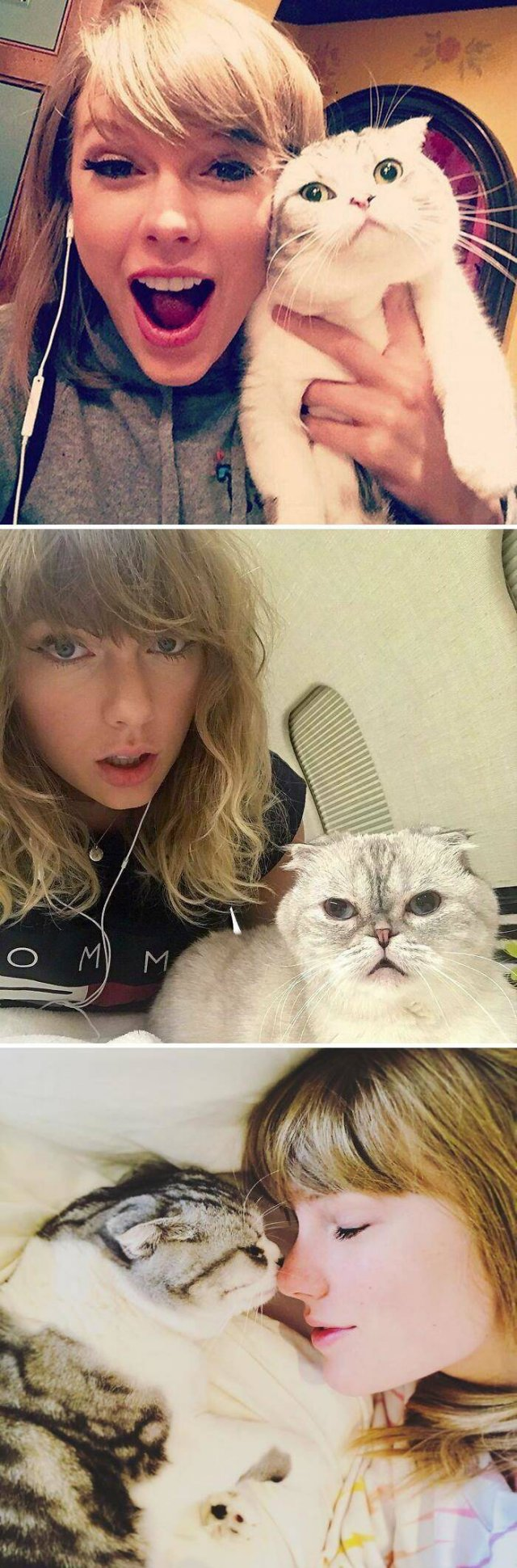 Celebrities With Their Pets (38 pics)