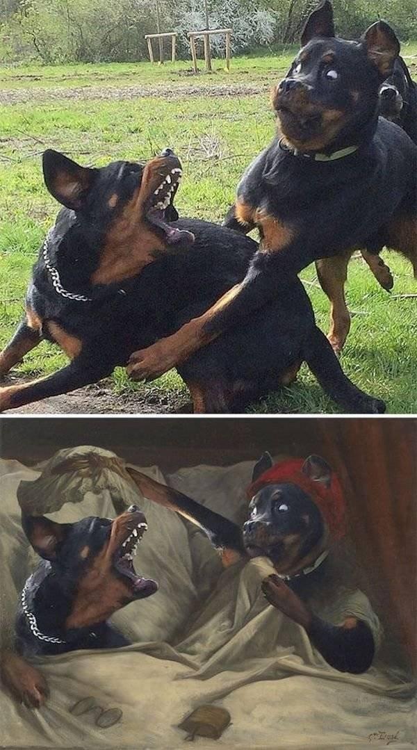 Hilarious Photoshop (34 pics)