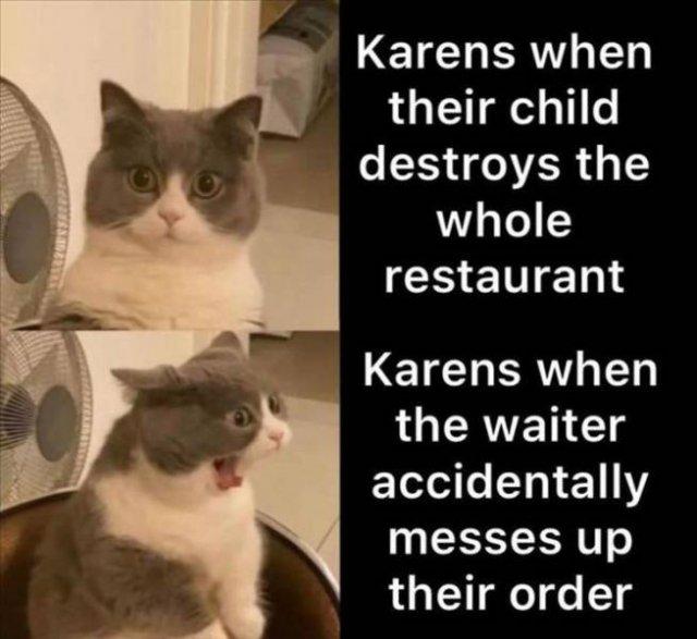 Random Funny Memes (56 pics)