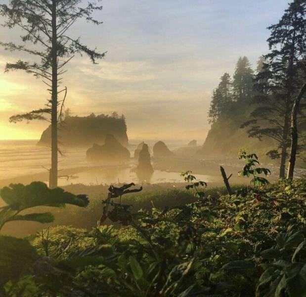 Amazing Nature Pictures (49 pics)