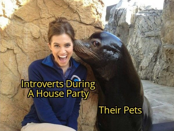 Introvert Memes And Tweets (24 pics)