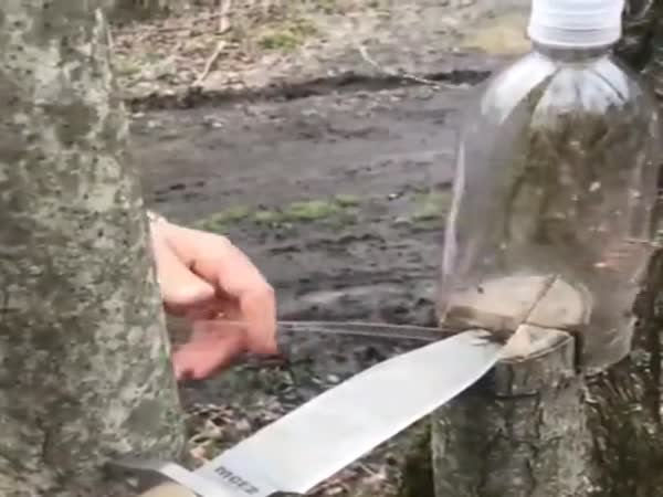 Making Rope From Plastic Bottle