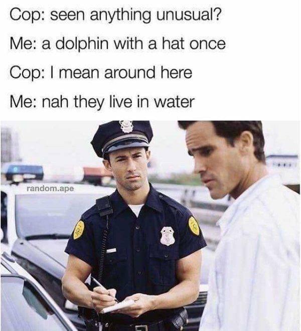 Internet Humor (25 pics)