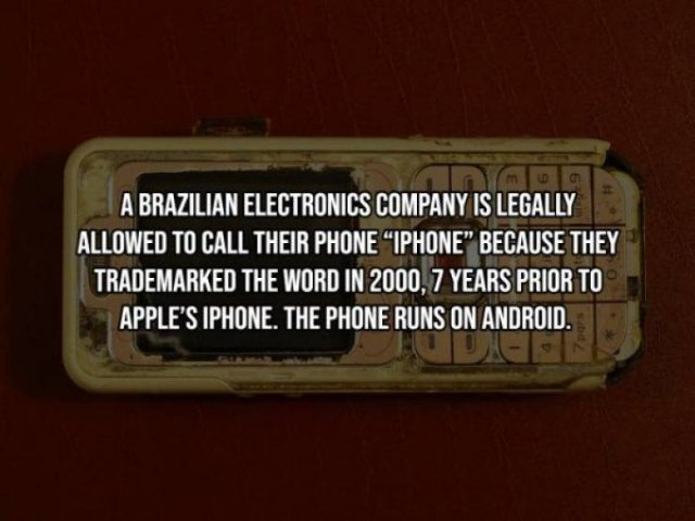 Intriguing Facts (19 pics)