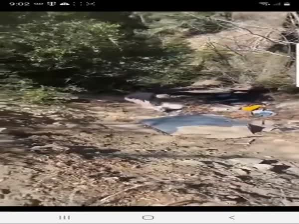 Prius Driver Dumping Trash On Mountain