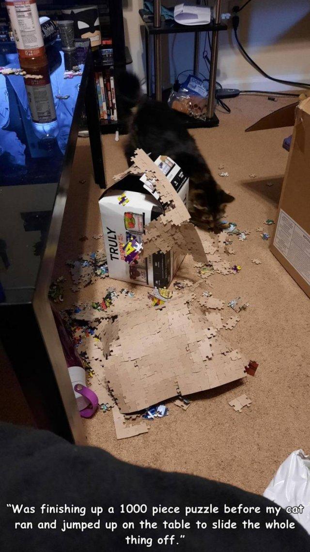 Bad Days Happen (43 pics)