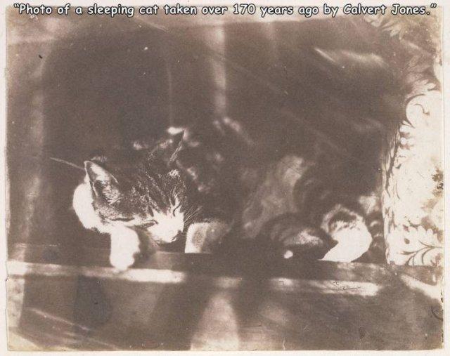 Acid Picdump 1 (82 pics)