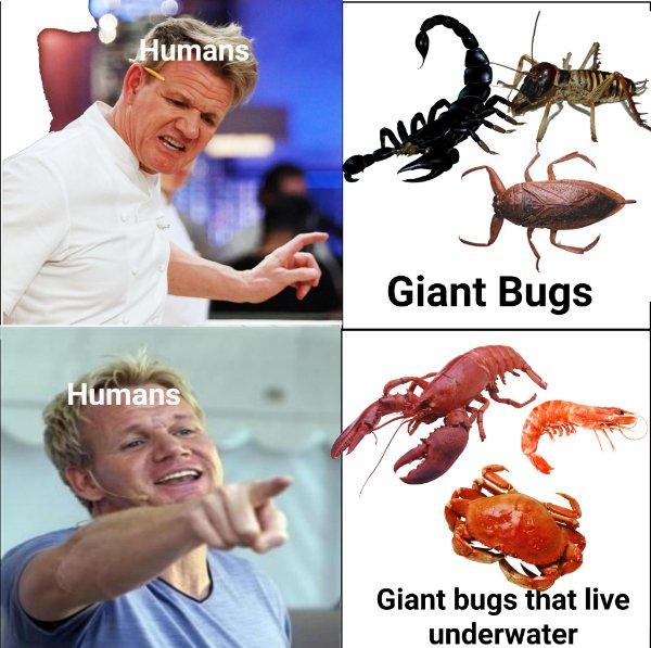 Random Funny Memes (19 pics)